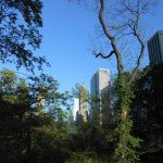 Central-Park1