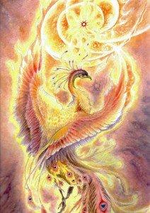 aquarelle-oiseau-de-feu011